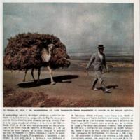 BN_02_07_1966.pdf
